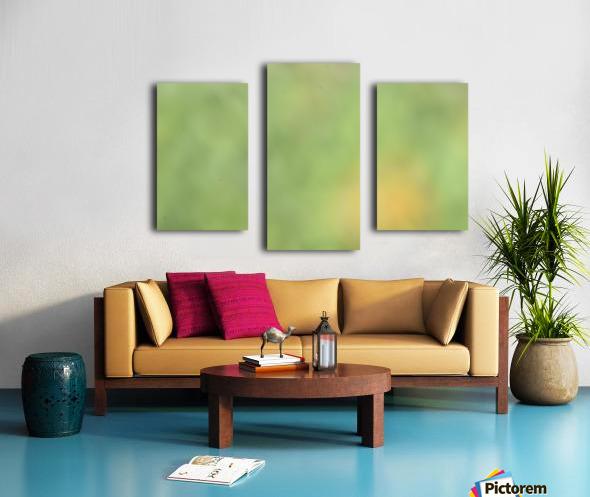 Abstract Art Bokeh - greens and yellow Canvas print