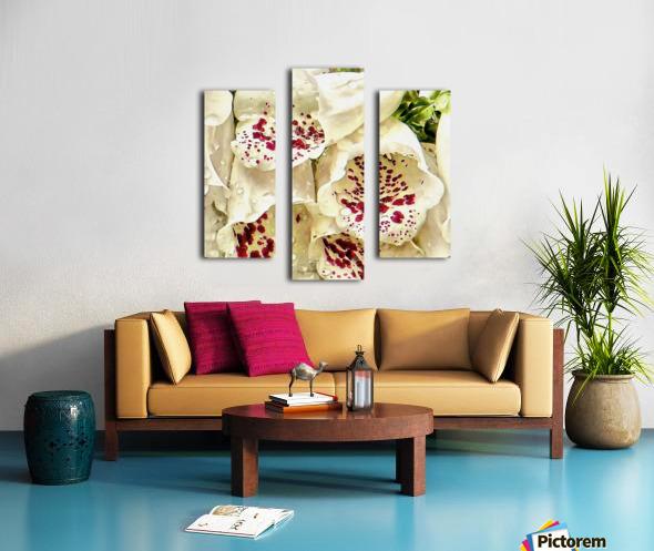 White Foxgloves with Raindrops Canvas print