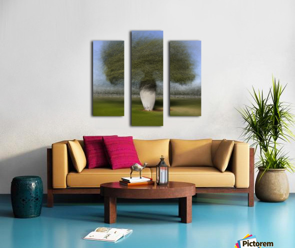 Ceiba speciosa Canvas print