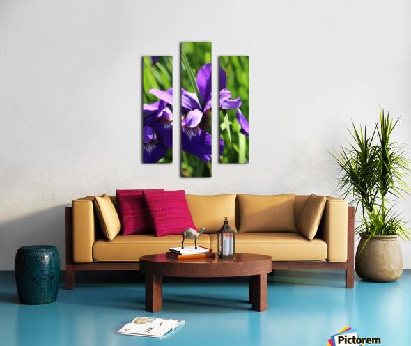 Purple Iris Impression sur toile