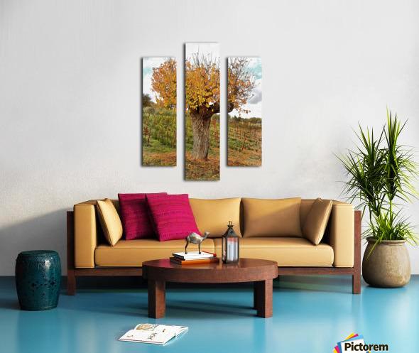 The Autumn Guardian Canvas print