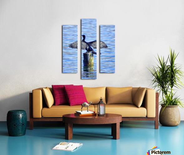 Cormorant Drying  His Wings Canvas print
