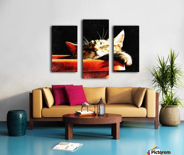 Wake Me When It Is Dinner Time Canvas print
