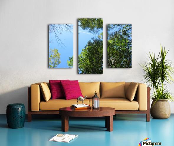 Landscape (200) Canvas print