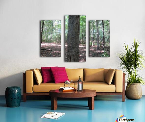 Landscape (166) Canvas print