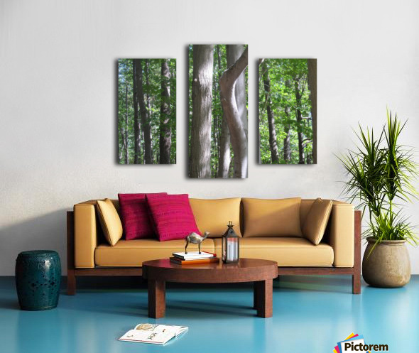 Landscape (267) Canvas print