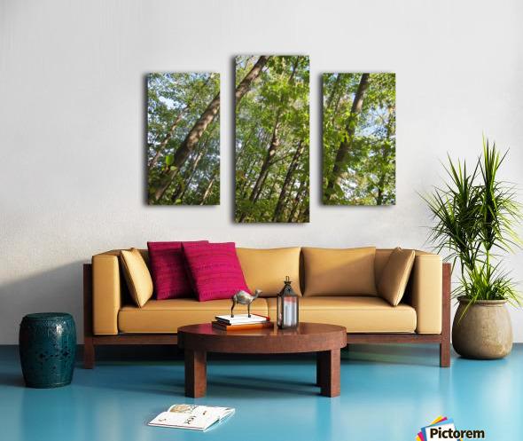 Landscape (108) Canvas print