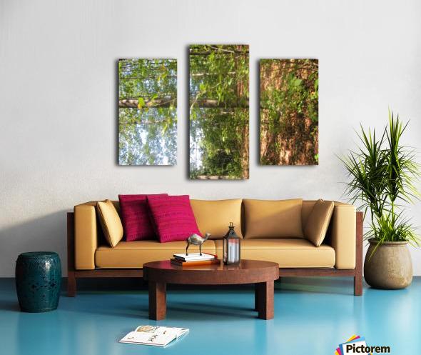 Landscape (105) Canvas print