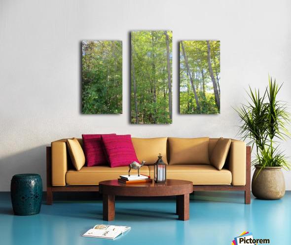 Landscape (288) Canvas print