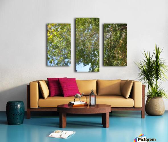 Landscape (302) Canvas print