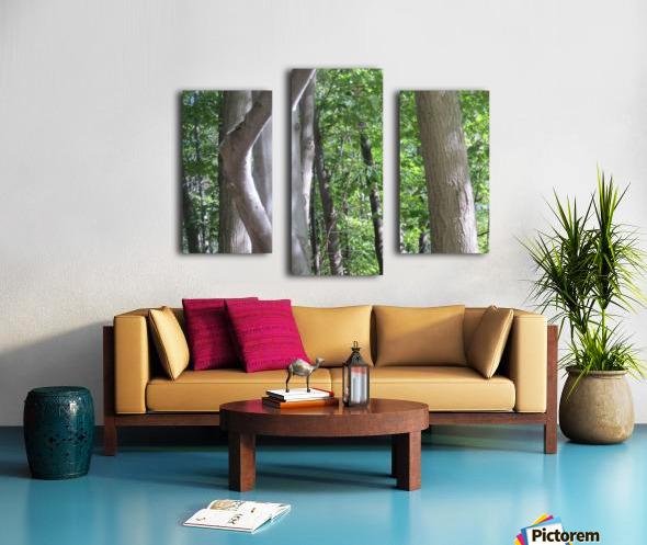 Landscape (266) Canvas print