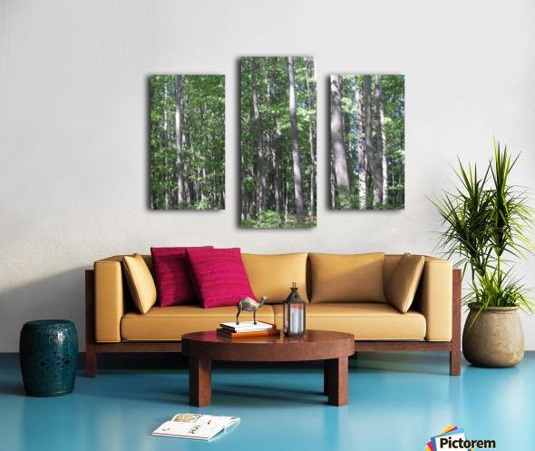 Landscape (87) Canvas print