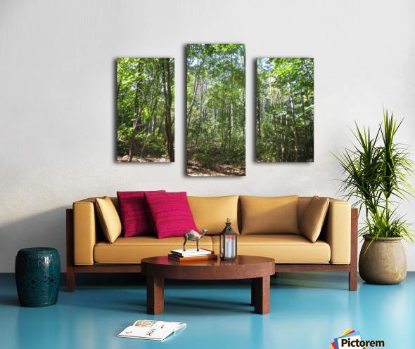 Landscape (176) Canvas print