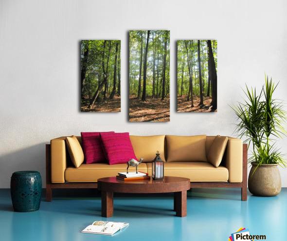 Landscape (37) Canvas print
