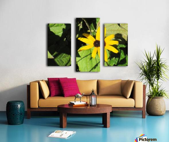 Flowers (62) Canvas print