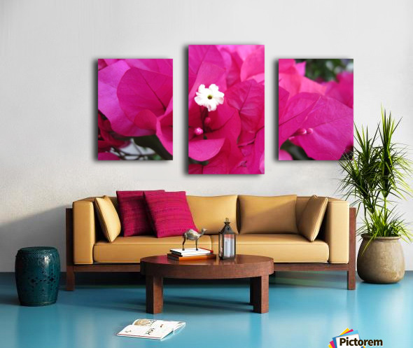 Flowers (95) Canvas print