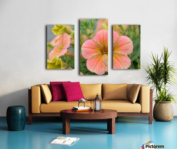 Orange Flowers Photograph Canvas print