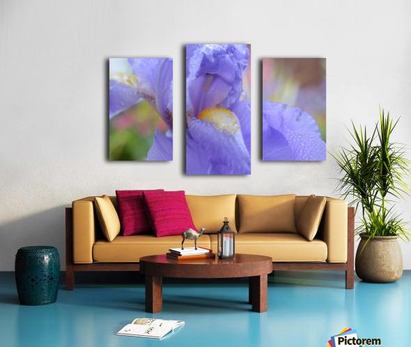Purple Iris Photograph Canvas print