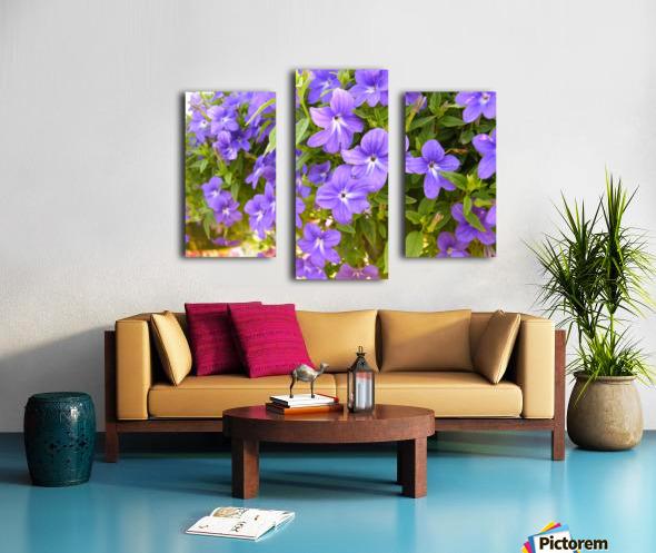Purple Flowers Photograph Canvas print