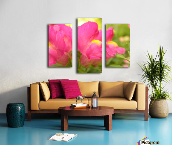 Pink Snapdragons Photograph Canvas print