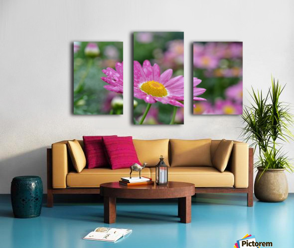 Pink Flower Photograph Canvas print