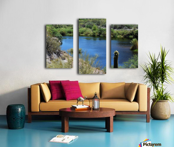 Salt River Canvas print