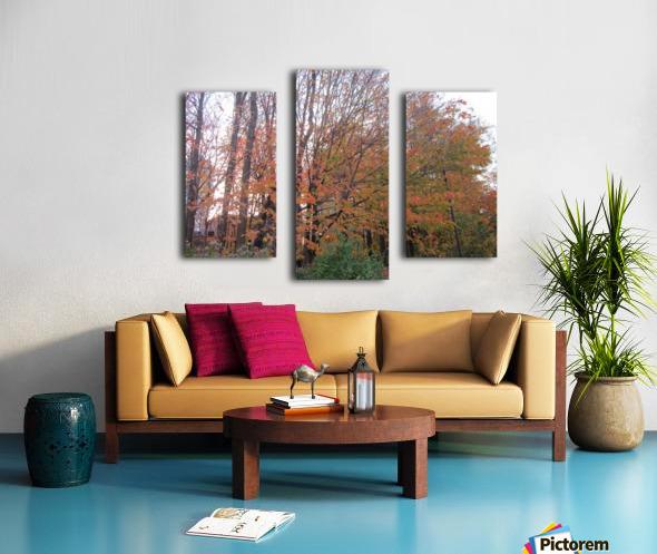 Fall Season (11) Canvas print
