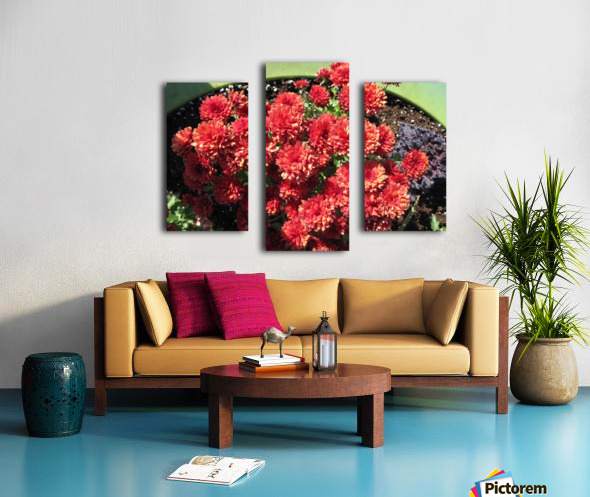 Flower (4) Canvas print