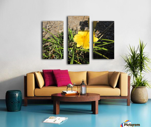Flower (49) Canvas print