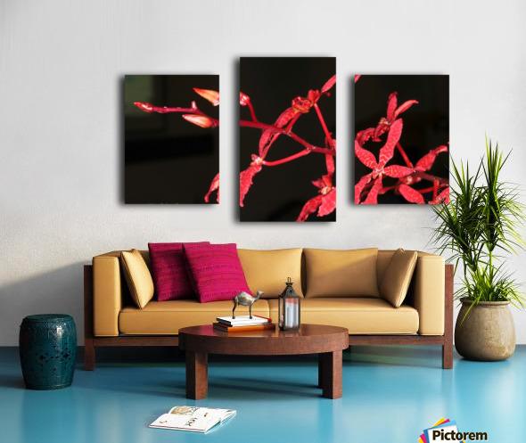 IMG_0124_a_WS Canvas print