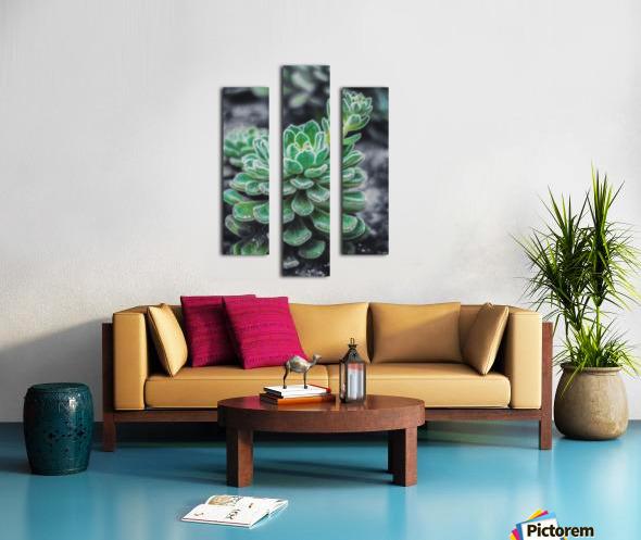 Sweetyplant Canvas print