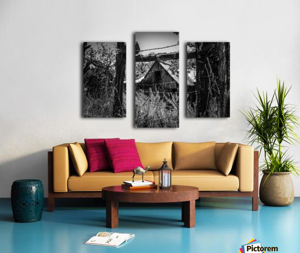 Abandoned Black and White Canvas print