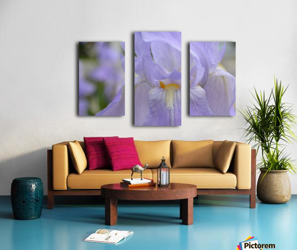 Pale Blue Iris Photograph Canvas print