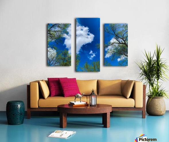 Bliss a Sky  Impression sur toile