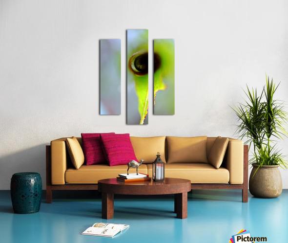 Curled Leaf 03 Canvas print
