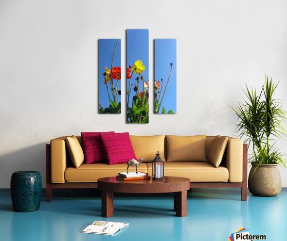 Spring Sky Garden Canvas print