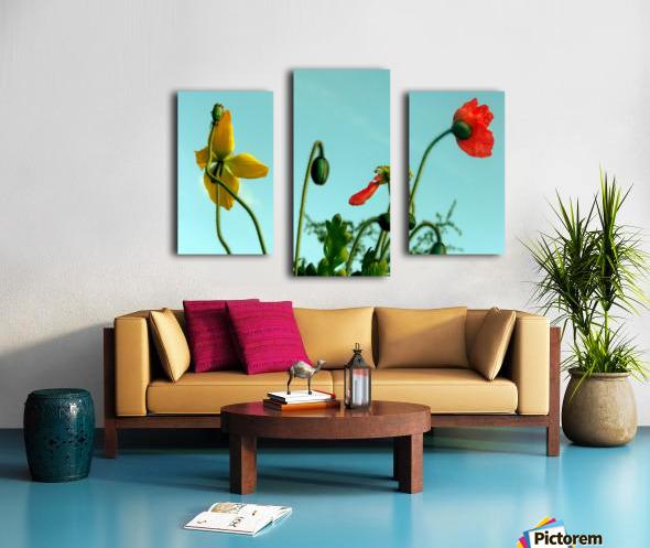 Spring Sky Flowers Canvas print