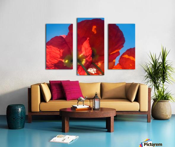 Red Poppy Sky Canvas print