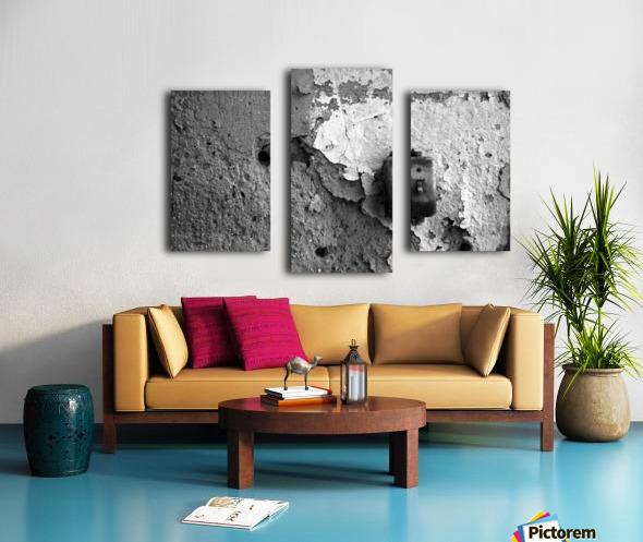 Switch Canvas print