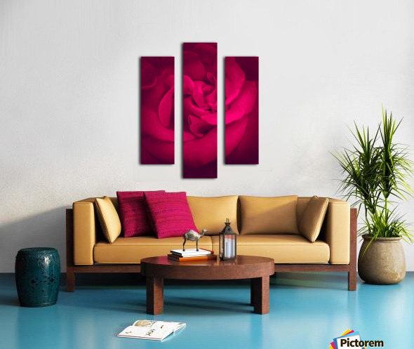red rose background Canvas print
