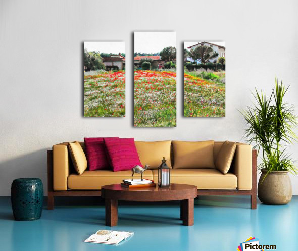 Old Farm House With Poppies Canvas print