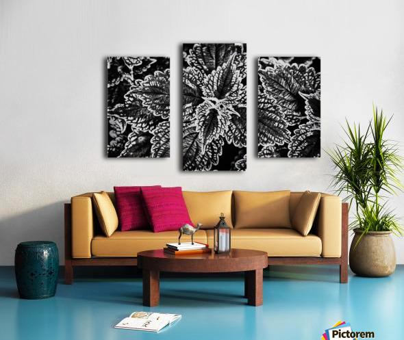 Bold Leaves Canvas print