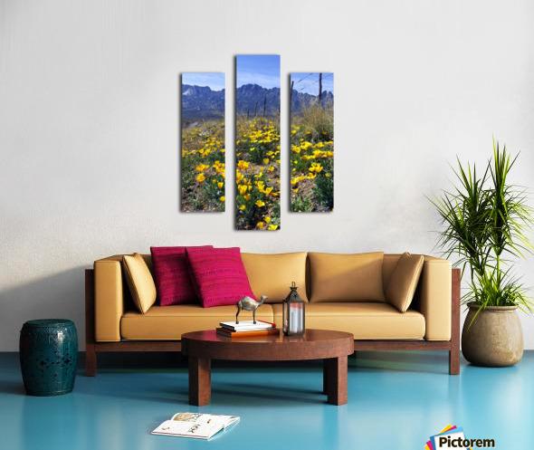 April at Aquirre Springs Impression sur toile