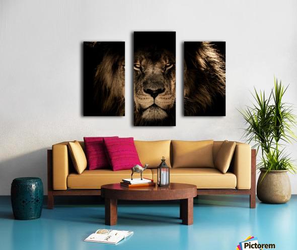 african lion wildcat mane closeup Canvas print