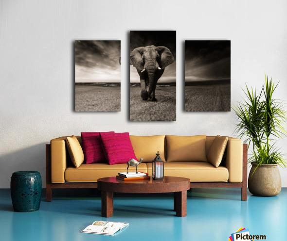 elephant animal africa safari Canvas print