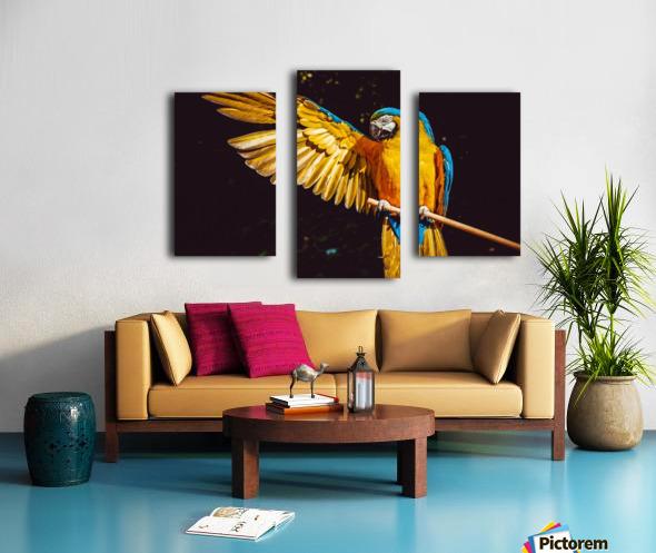 ara parrot yellow macaw bird Canvas print