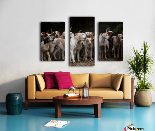 dog herd canine animal pet hounds Canvas print