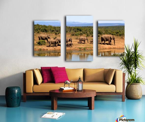 elephant herd of elephants Canvas print