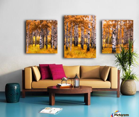 Birch Trees Autumn  Canvas print