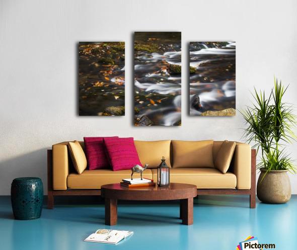 River Flow in Smokey Mountains Canvas print